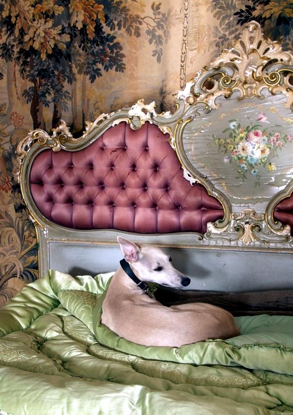 Design in the Rococo style - more reminiscent of fine art eras