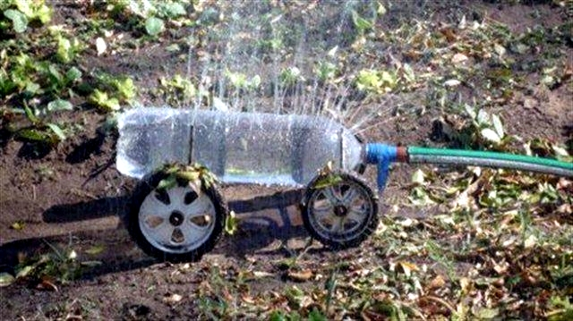 watering the lawn - Tips for lawn care