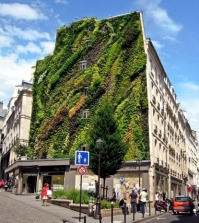patrick-blanc-wide-facade-greening-promotes-environmental-protection-0-138