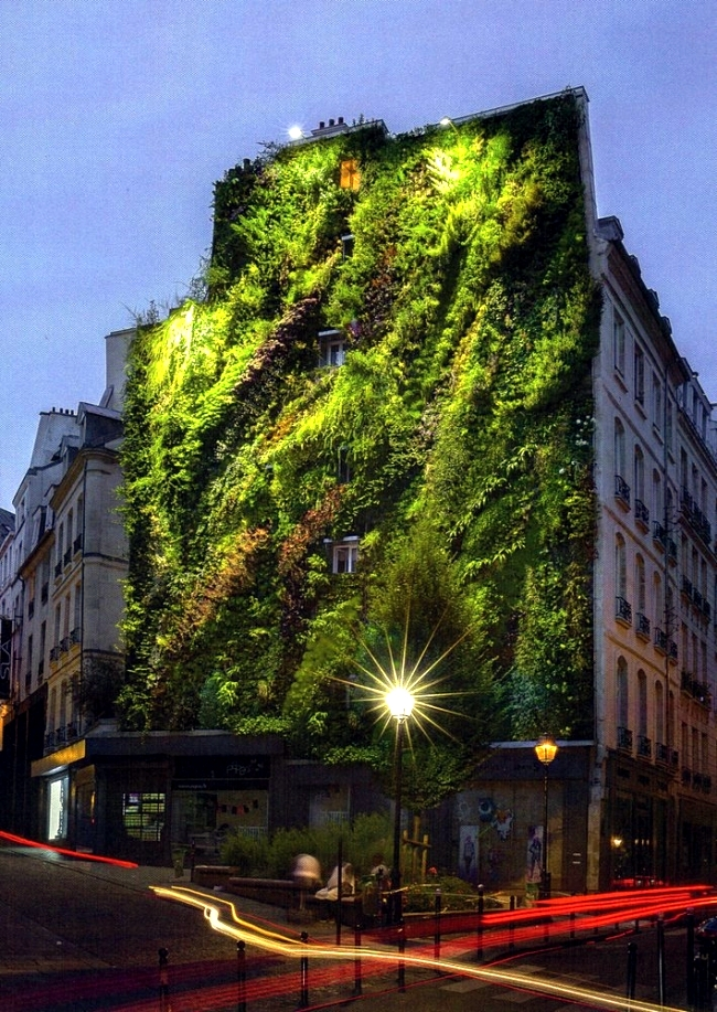 Patrick Blanc wide facade greening promotes environmental protection