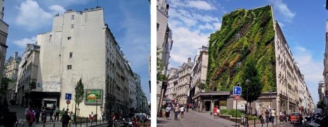 Patrick Blanc wide facade greening promotes environmental protection