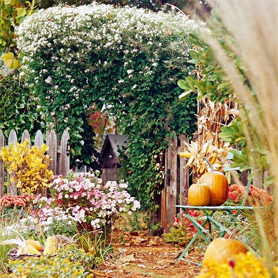 The garden in autumn tips and ideas for your fall garden interior design ideas ofdesign - Fall landscaping ideas a mosaic of colors shapes and scents ...