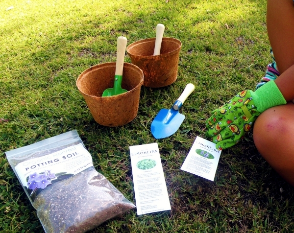 Designing the garden with and for children - Tips for Parents