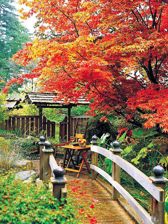 20 important elements of garden design a beautiful garden