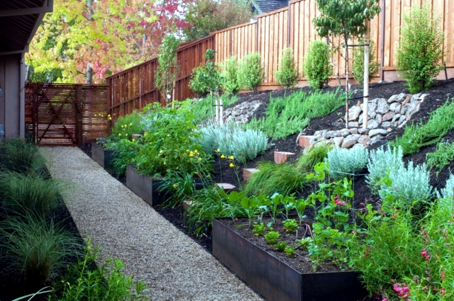 Garden design ideas the best trees for small gardens for Great small garden ideas