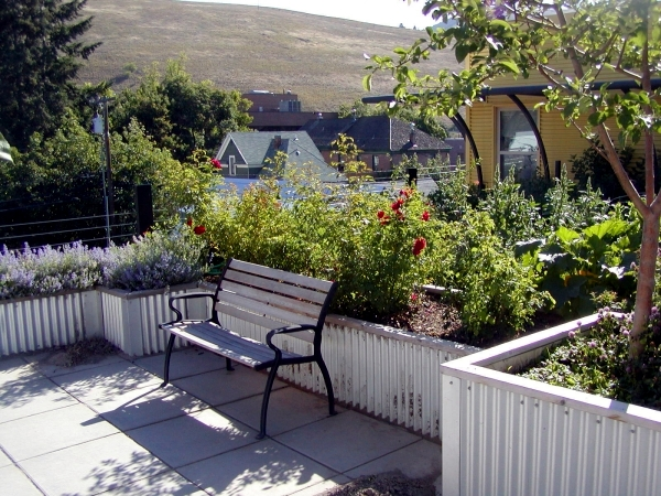 Intensive and extensive green roofs - A tendency to sustainable lifestyle