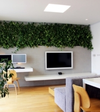 32-ideas-for-interior-decoration-plants-creative-containers-and-packages-0-175