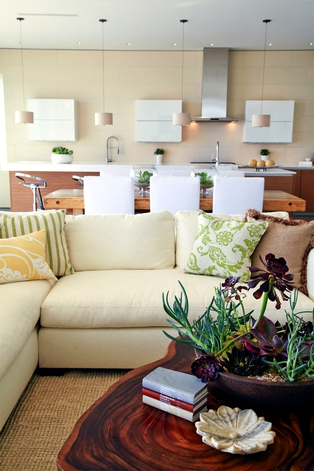 32 ideas for interior decoration plants - creative containers and packages
