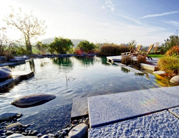 Swimming pond build - benefits of natural pool in the garden