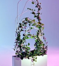 metal-planter-with-trellis-design-offecct-0-192