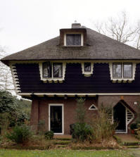 house-with-a-special-design-on-the-top-floor-and-the-facade-of-straw-0-194