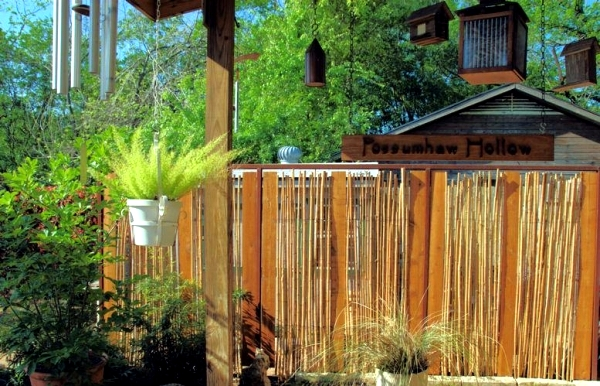 Good questions and answers about the design and garden maintenance