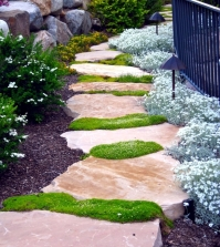 20-design-ideas-garden-path-that-make-the-garden-a-unique-look-0-200
