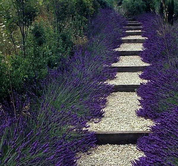 20 design ideas garden path that make the garden a unique look