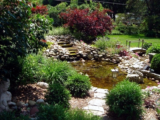 How to build a garden pond low maintenance itself in 7 Steps