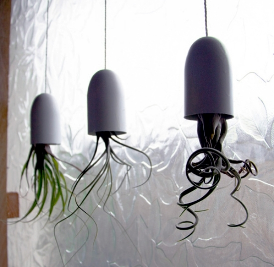 Tinker suspended planters - a great idea for mini terrariums