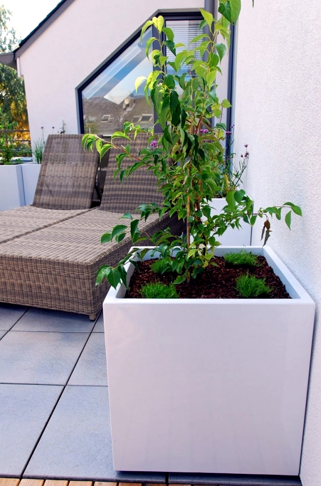 Fiber cement planters - Ideal for urban gardening on the balcony