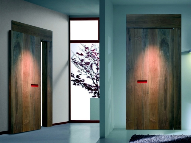 Apartment Door Design