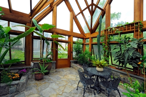 Tips for proper care of the plants in the winter garden Interior
