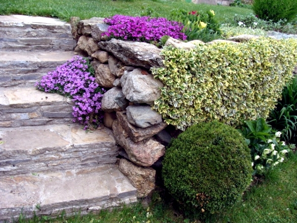 10 Tips Landscaping: a harmonious