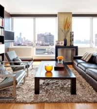 20-soft-shag-rug-with-all-modern-amenities-0-279
