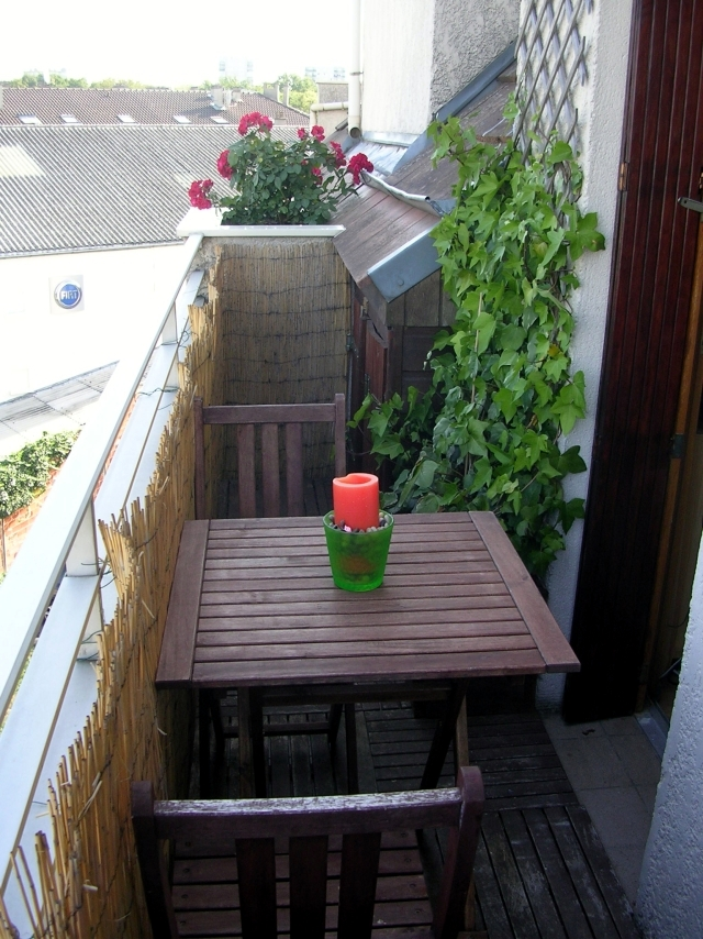 Bambus Balkon Sichtschutz Obi : Sichtschutz Aus Bambus Obi : Für den Sichtschutz habe ich Bambus und ...