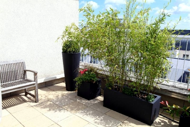 Bamboo balcony privacy screen - ideas with plants, carpets and bars