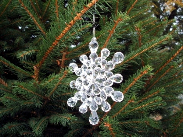 Choose the perfect Christmas tree - fresh green pine tips
