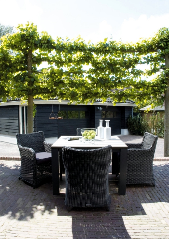 Keep prying eyes privacy patio with plants interior - Muebles de patio ...