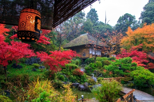 Garden Design In Japanese Style And Countries Including Plants 3550