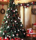 buy-christmas-trees-helpful-tips-on-how-to-choose-the-christmas-tree-0-309