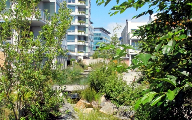22 excellent examples of gardens in the city