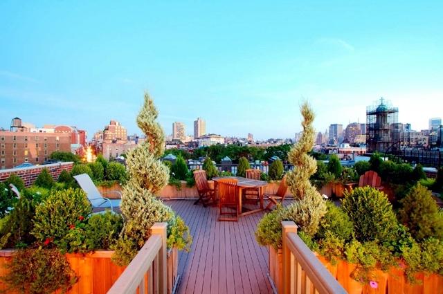 Rooftop terrace & balcony