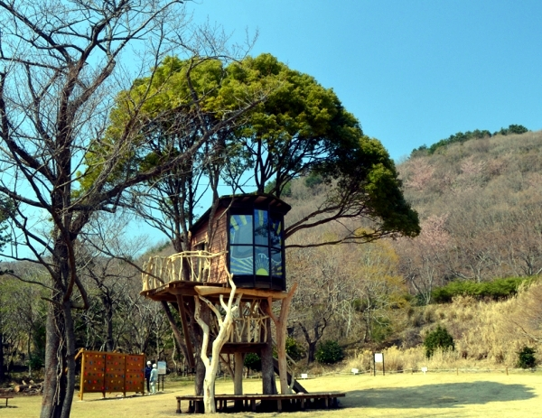 Treehouse Designs That Will Amaze You! - Dig This Design on florida house construction, tree houses for adults, tree homes for rent in virginia, tree houses to live in, treehouse platform construction, fire house construction, owl house construction, santa house construction, green house construction, tree flooring, ocean house construction, art house construction, tent construction, rock wall construction, light house construction, love house construction, grass house construction, mountain house construction, squirrel house construction, deck construction,