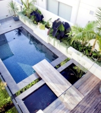 tortuga-in-the-garden-build-modern-terrarium-in-the-yard-0-335