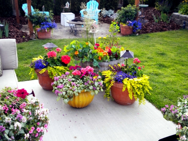 Creating gardens in the spring and summer - flowers and plants