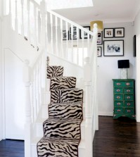 riders-scale-zebra-look-in-the-bright-hallway-with-wooden-floor-0-342