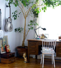 tree-in-the-workplace-0-346