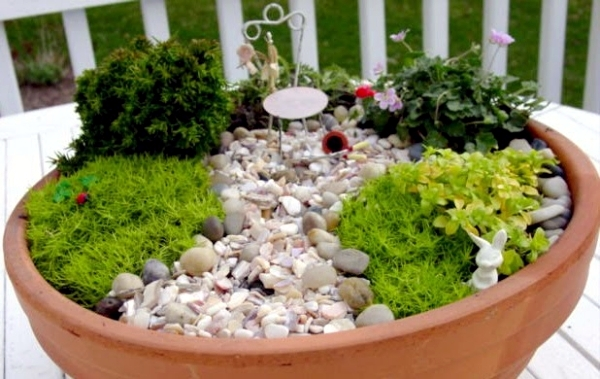 Create miniature gardens in pots on the balcony - How to start a mini garden ...