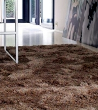 collection-of-hairy-shaggy-carpet-carpet-sign-bast-0-370