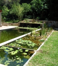9 myths about organic swimming pond in the organic garden for Self cleaning pond