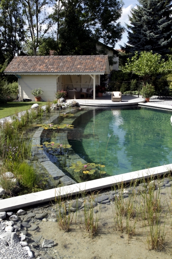 Diy By Swimming Pond With A Natural Self Cleaning Process