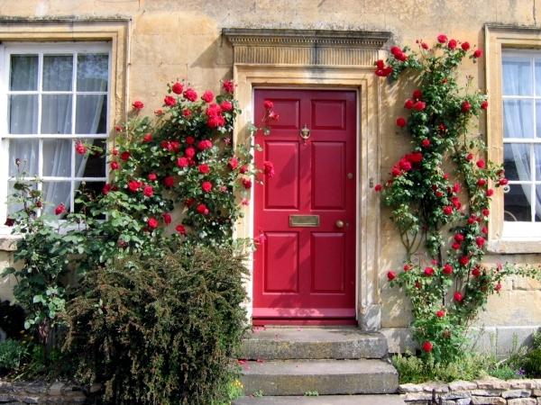 Spring Rose cut - cut and keep climbing roses
