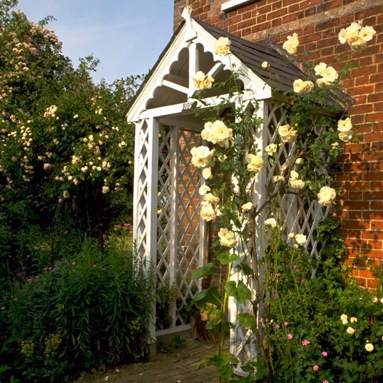 Spring Rose cut - cut and keep climbing roses