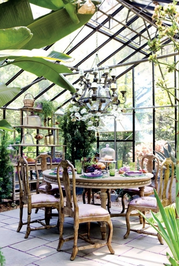Tips for winter garden green oasis center privacy