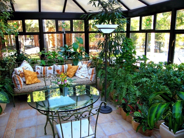 tips for winter garden  green oasis center privacy  interior, Natural flower