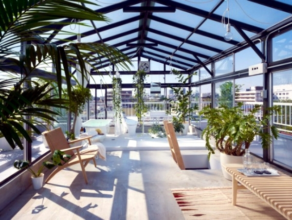 Tips for winter garden - green oasis center privacy