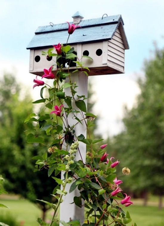 Build Vogelfutterhaus me - attracting birds to the garden