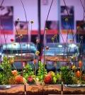 arrange-flowers-like-a-pro-dandelion-ranch-floral-arrangements-0-413