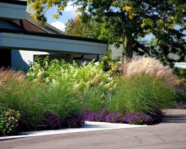 Perennials in the garden - design ideas with pampas grass
